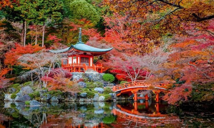 Giardino D Inverno Giapponese : Apertura giardino dell istituto giapponese di roma