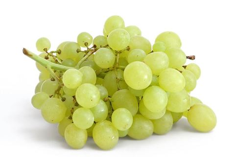 uva-bianca_NG1.jpg