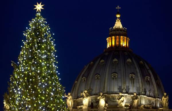 christmas-tree-2014-vatican.jpg