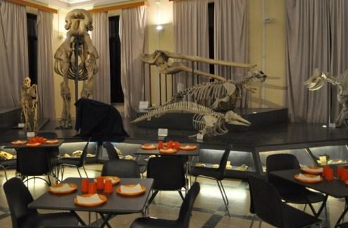 cena-al-Museo-1 (1).jpg
