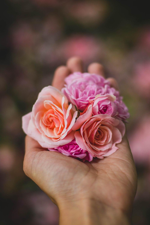 2 fiori