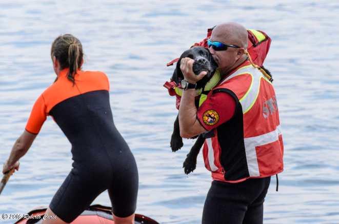 25giu16. Cani Salvataggio SICS (foto di Roby Carsi)